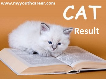 CAT Exam result 2013,CAT result 2013,CAT entrance exam Result 2013,result date of CAT exam 2013