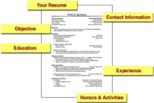 templates for building professional CV