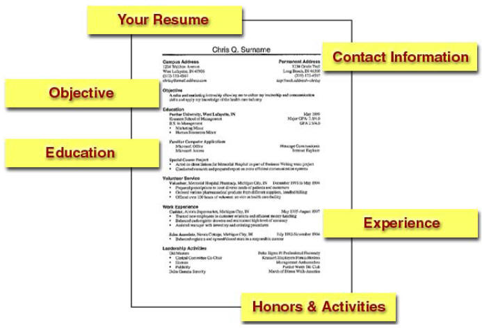 trending resume format layout for professional cv